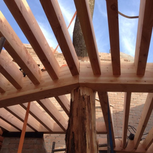 construction de charpente en bois, spécialiste en belgique - ccbois
